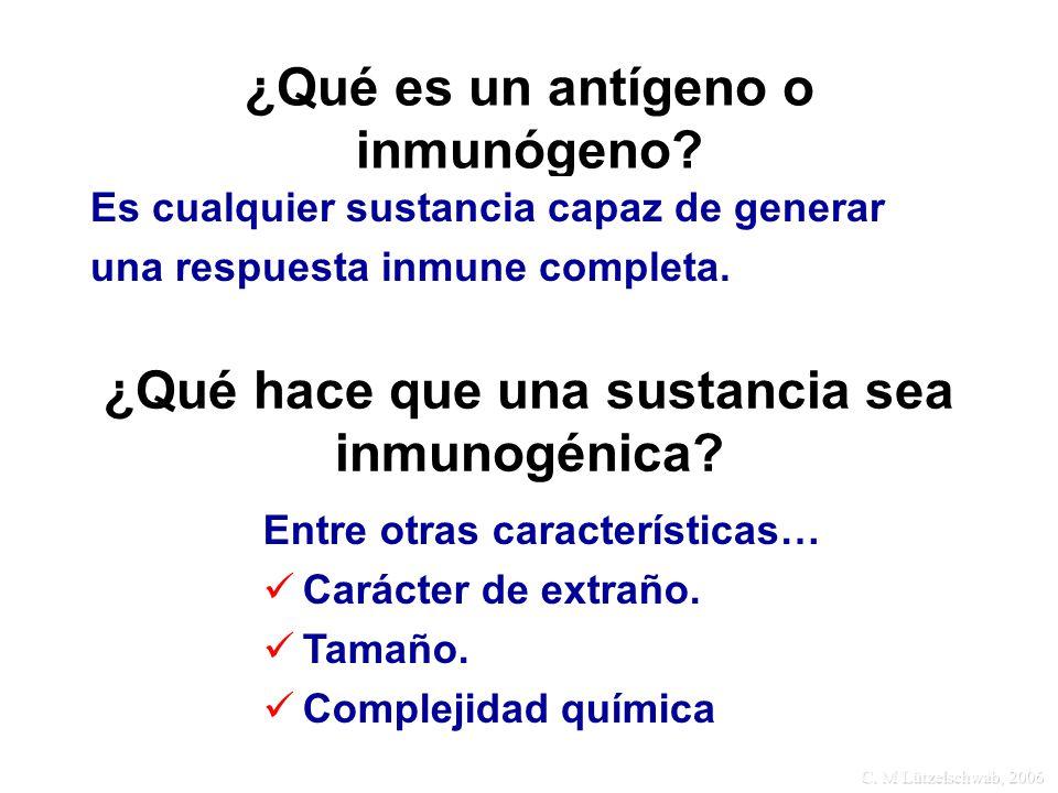 C. M Lützelschwab, 2006 ¿Qué es un antígeno o inmunógeno? Es cualquier sustancia capaz de generar una respuesta inmune completa. ¿Qué hace que una sus