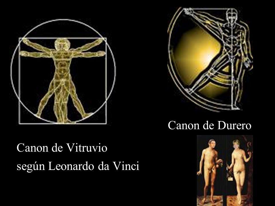 Canon de Durero Canon de Vitruvio según Leonardo da Vinci