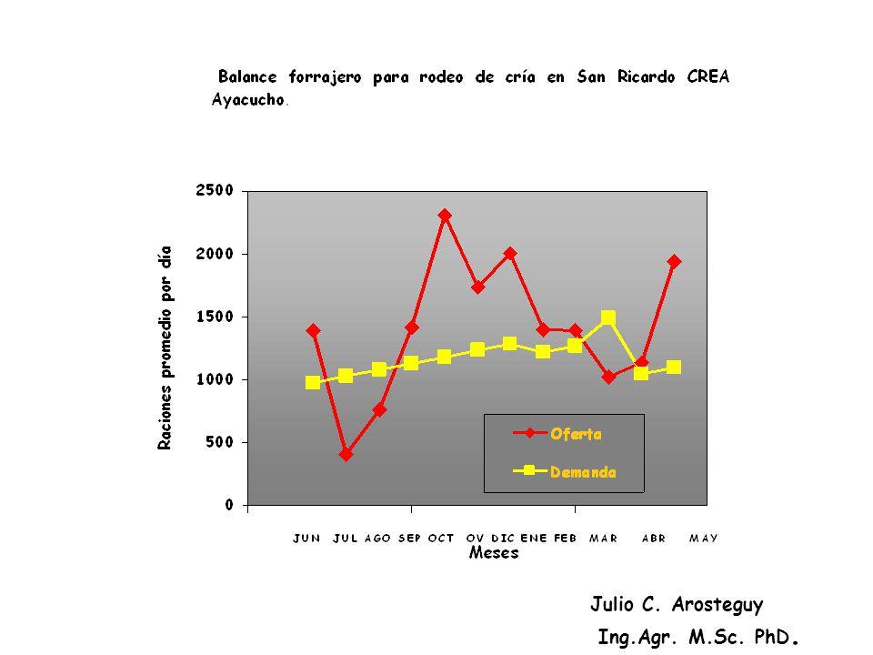 Julio C. Arosteguy Ing.Agr. M.Sc. PhD.