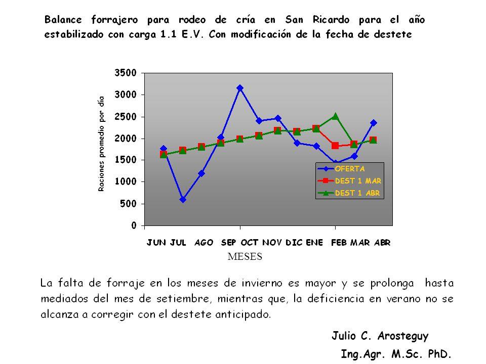 MESES Julio C. Arosteguy Ing.Agr. M.Sc. PhD.