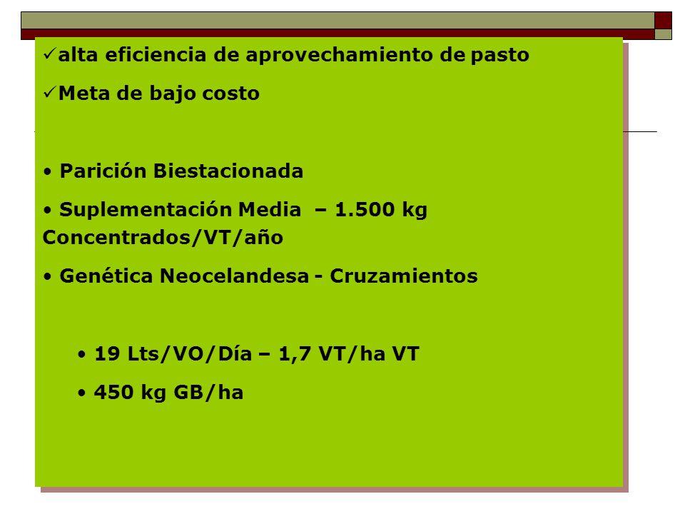 alta eficiencia de aprovechamiento de pasto Meta de bajo costo Parición Biestacionada Suplementación Media – 1.500 kg Concentrados/VT/año Genética Neocelandesa - Cruzamientos 19 Lts/VO/Día – 1,7 VT/ha VT 450 kg GB/ha alta eficiencia de aprovechamiento de pasto Meta de bajo costo Parición Biestacionada Suplementación Media – 1.500 kg Concentrados/VT/año Genética Neocelandesa - Cruzamientos 19 Lts/VO/Día – 1,7 VT/ha VT 450 kg GB/ha