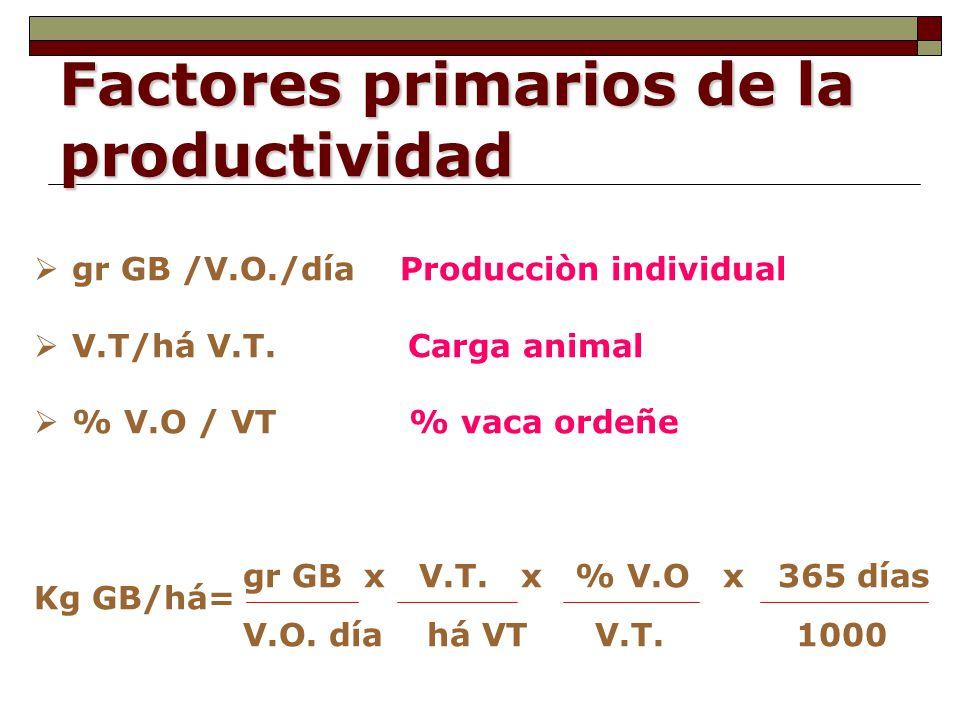 Factores primarios de la productividad gr GB /V.O./día Producciòn individual V.T/há V.T.