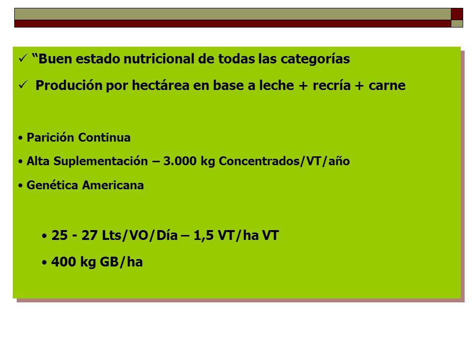 Buen estado nutricional de todas las categorías Produción por hectárea en base a leche + recría + carne Parición Continua Alta Suplementación – 3.000 kg Concentrados/VT/año Genética Americana 25 - 27 Lts/VO/Día – 1,5 VT/ha VT 400 kg GB/ha Buen estado nutricional de todas las categorías Produción por hectárea en base a leche + recría + carne Parición Continua Alta Suplementación – 3.000 kg Concentrados/VT/año Genética Americana 25 - 27 Lts/VO/Día – 1,5 VT/ha VT 400 kg GB/ha