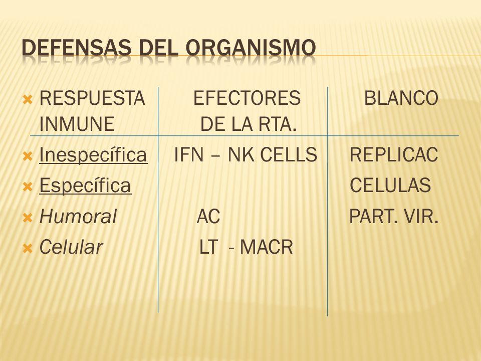 RESPUESTA EFECTORES BLANCO INMUNE DE LA RTA. Inespecífica IFN – NK CELLS REPLICAC Específica CELULAS Humoral AC PART. VIR. Celular LT - MACR
