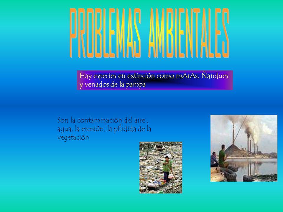 Hay especies en extinción como mArAs, Ñandues y venados de la pampa Son la contaminación del aire, agua, la erosión, la pÉrdida de la vegetación