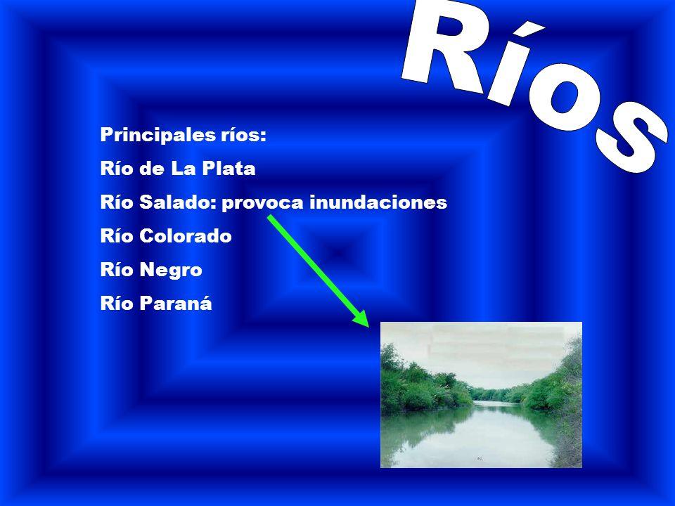 Principales ríos: Río de La Plata Río Salado: provoca inundaciones Río Colorado Río Negro Río Paraná