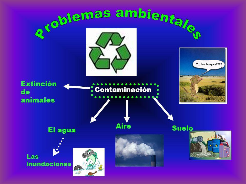 Contaminación Aire Suelo El agua Extinción de animales Las inundaciones
