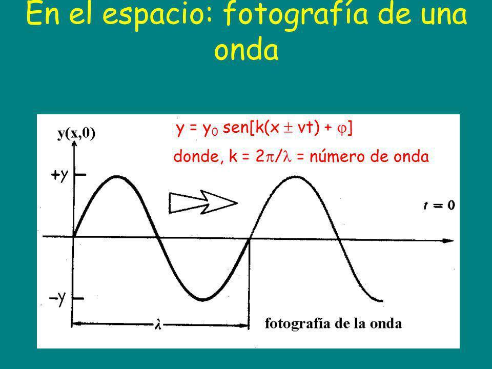 En el espacio: fotografía de una onda y = y 0 sen[k(x vt) + ] donde, k = 2 / = número de onda