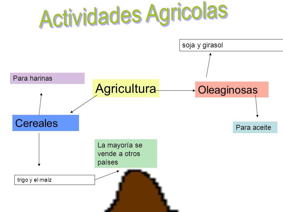 Agricultura La mayoría se vende a otros países Cereales Para harinas Oleaginosas Para aceite soja y girasol trigo y el maíz