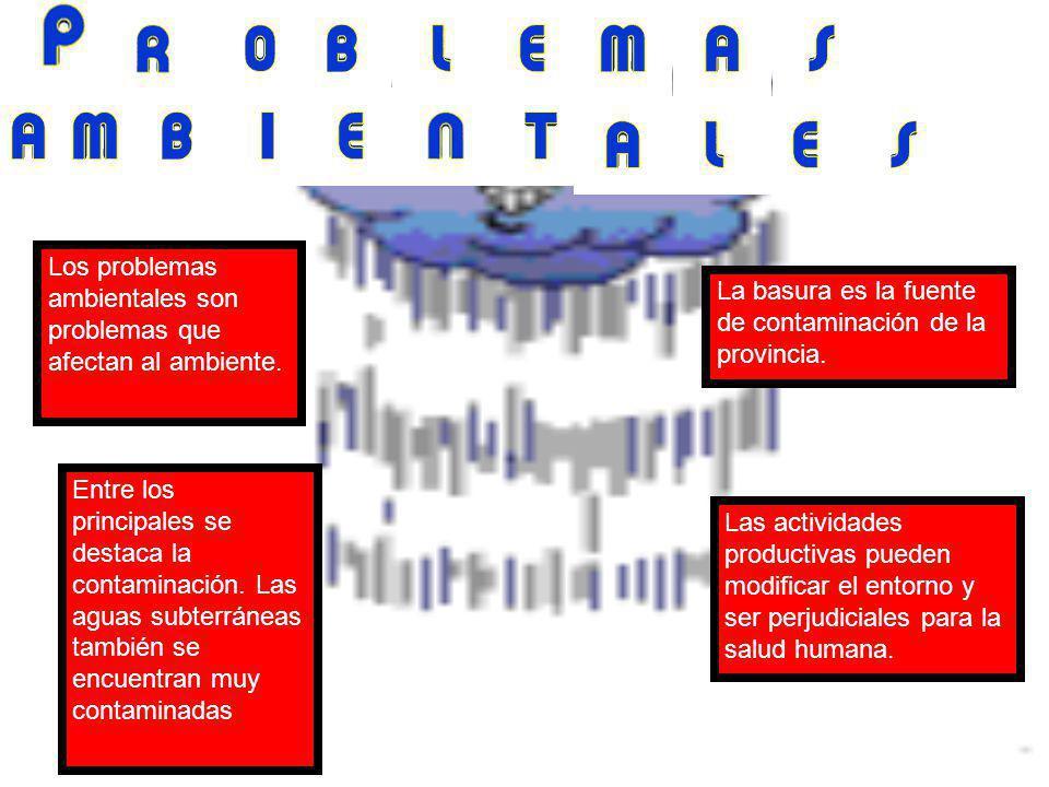 Los problemas ambientales son problemas que afectan al ambiente.
