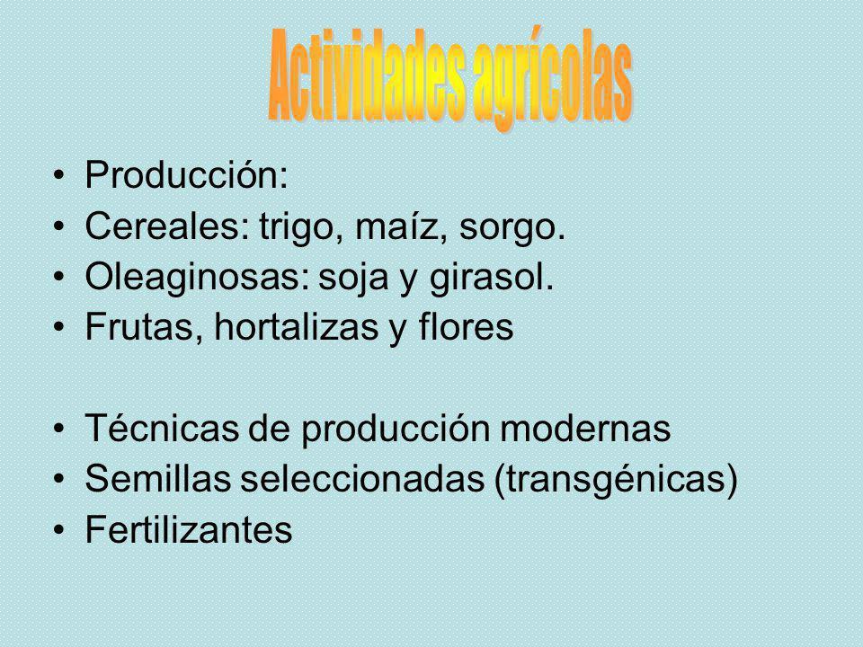 Producción: Cereales: trigo, maíz, sorgo. Oleaginosas: soja y girasol. Frutas, hortalizas y flores Técnicas de producción modernas Semillas selecciona