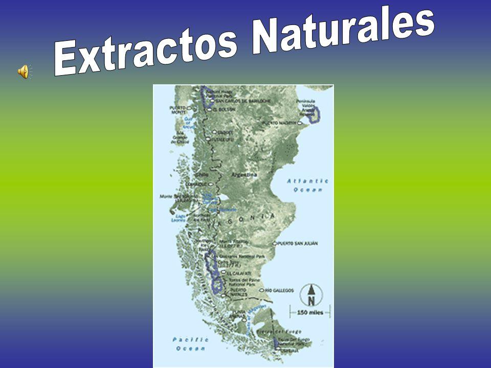 Pt. Pirámide Ubicado en Península Valdes, Chubut Tiene 50 metros de altura.