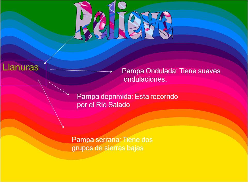 Clima Templado Lluvias regulares Vientos Viento Del Norte proviene de la llanura Chaqueña y produce calor Viento Pampero – Viene de la Pampa Y produce