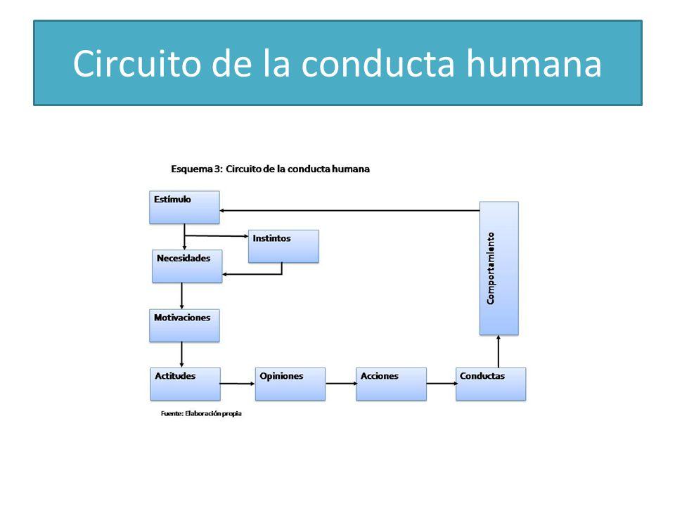 Circuito de la conducta humana