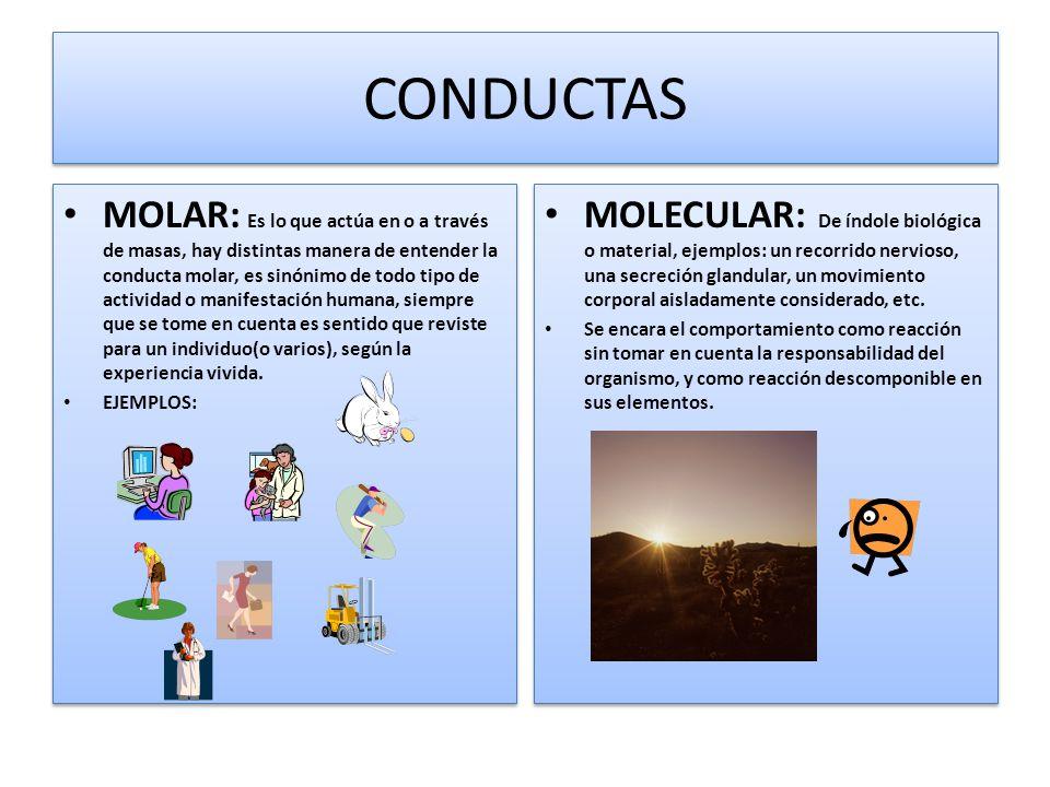 CONDUCTAS MOLAR: Es lo que actúa en o a través de masas, hay distintas manera de entender la conducta molar, es sinónimo de todo tipo de actividad o m