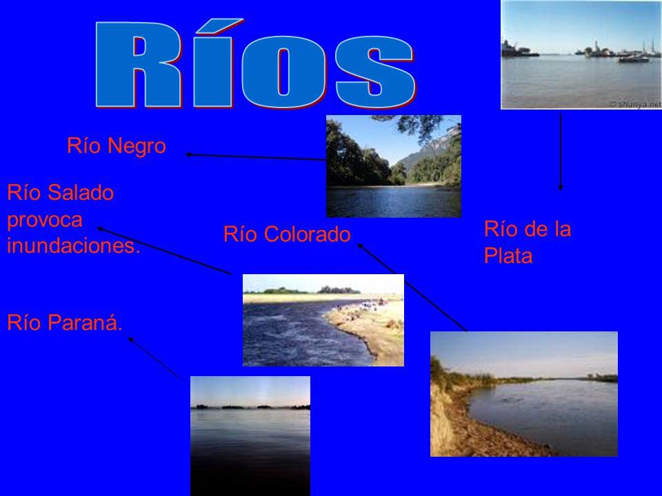 Río Paraná. Río Colorado Río Negro Río Salado provoca inundaciones. Río de la Plata