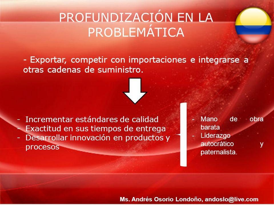 PROFUNDIZACIÓN EN LA PROBLEMÁTICA - Exportar, competir con importaciones e integrarse a otras cadenas de suministro. -Incrementar estándares de calida
