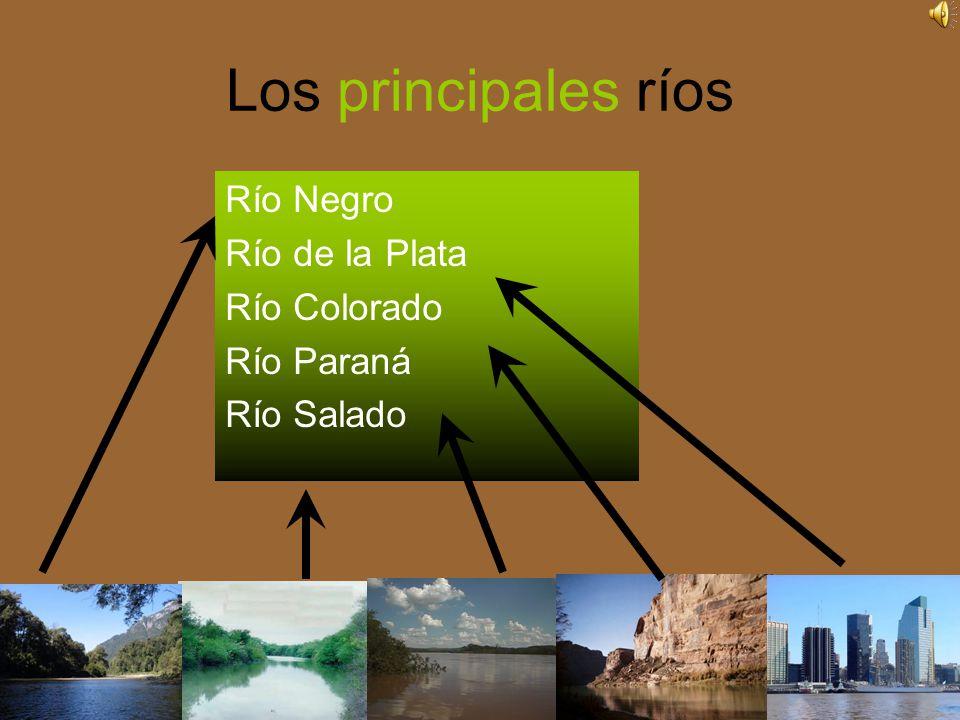 Los principales ríos Río Negro Río de la Plata Río Colorado Río Paraná Río Salado