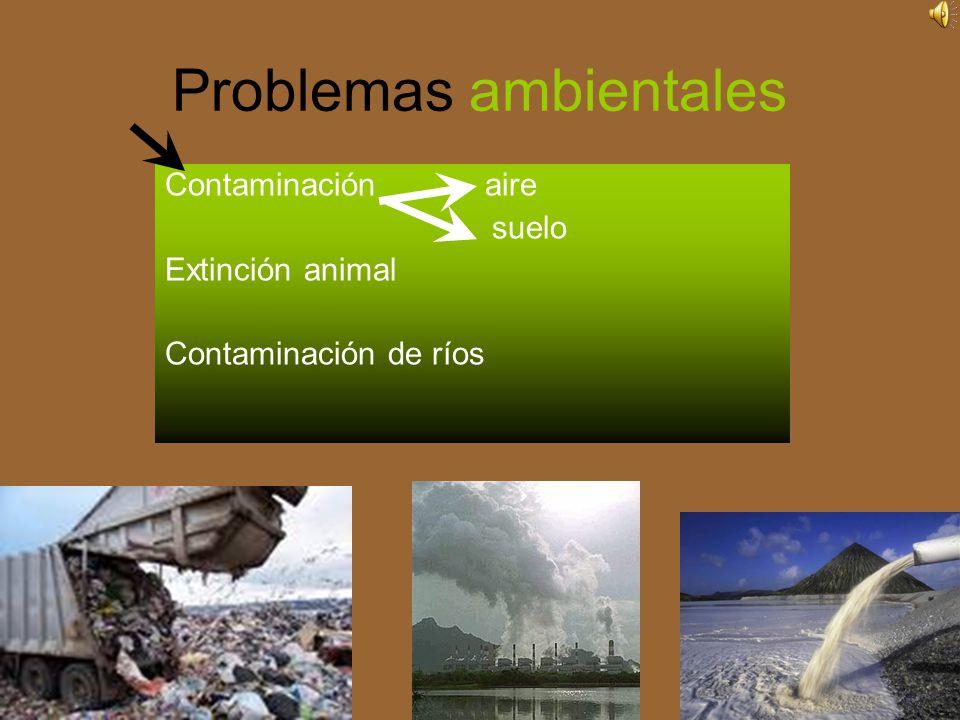 Problemas ambientales Contaminación aire suelo Extinción animal Contaminación de ríos
