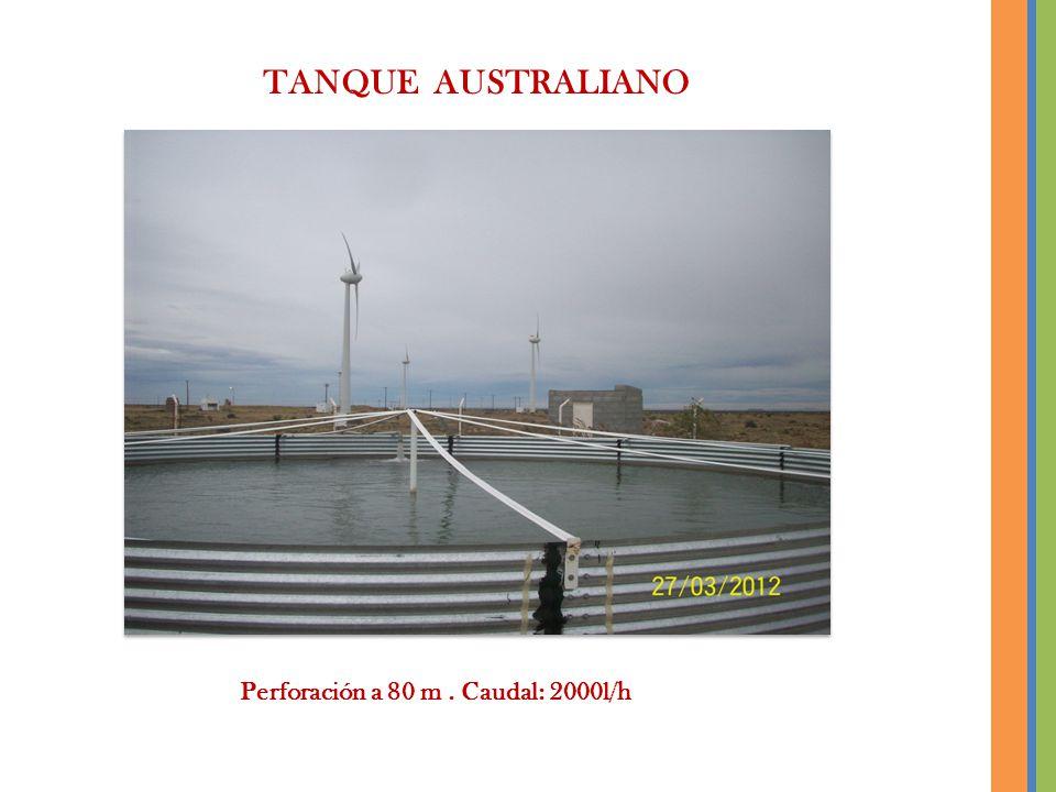 TANQUE AUSTRALIANO Perforación a 80 m. Caudal: 2000l/h