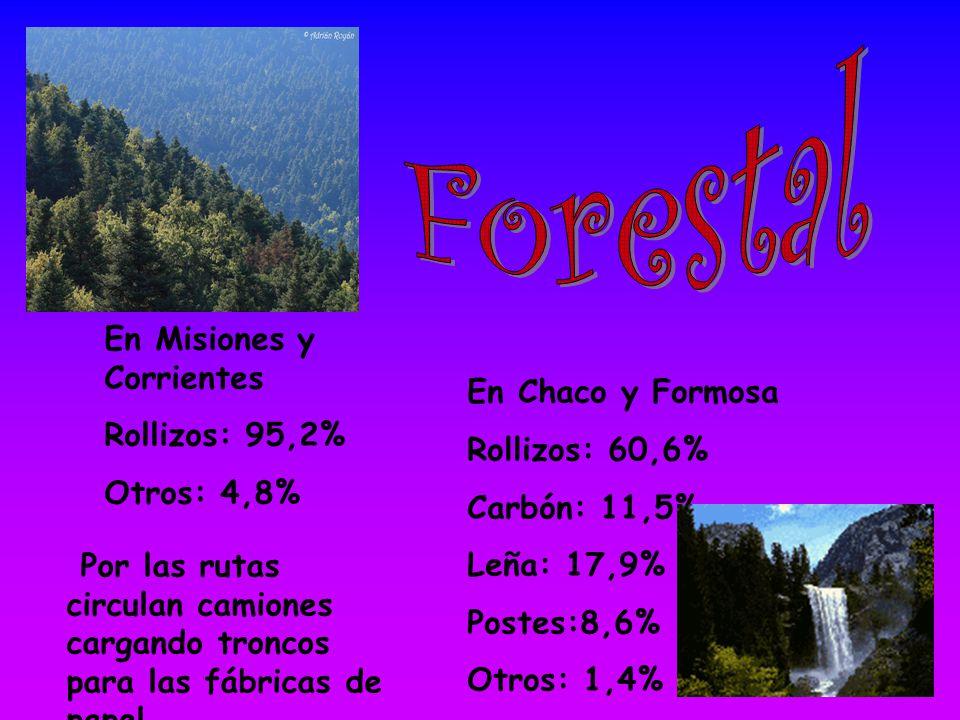 En Misiones y Corrientes Rollizos: 95,2% Otros: 4,8% En Chaco y Formosa Rollizos: 60,6% Carbón: 11,5% Leña: 17,9% Postes:8,6% Otros: 1,4% Por las rutas circulan camiones cargando troncos para las fábricas de papel