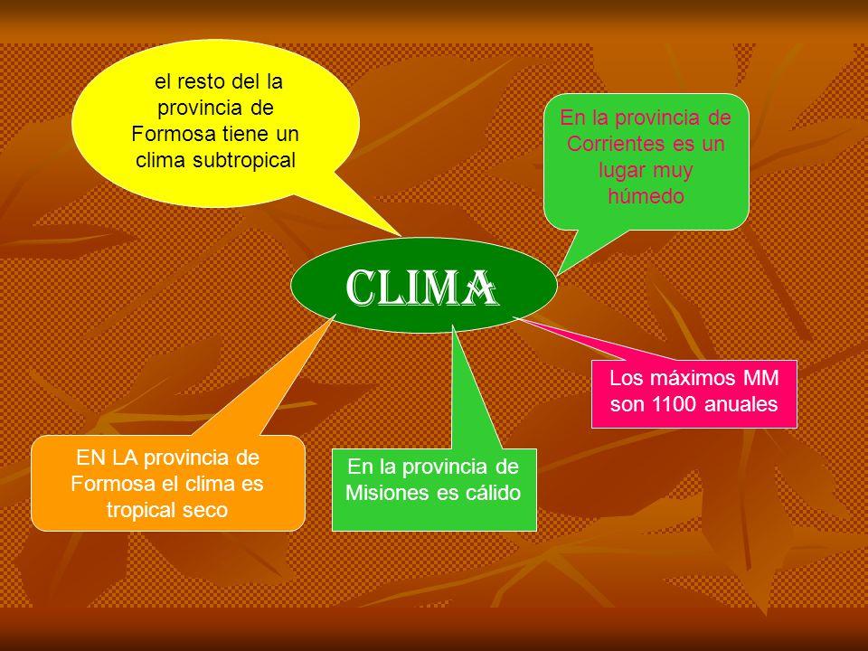 CHACO Y FORMOSA ES UNO DE LOS LUGARES CON MAS FLORA Y FAUNA DEL NORESTE TAMBIEN EN MISIONES HAY MUCHOS BOSQUES ESTANCADOS Y TAMBIEN EN CORRIENES HAY MUCHA FAUNA Y FLORA ACUÁTICA