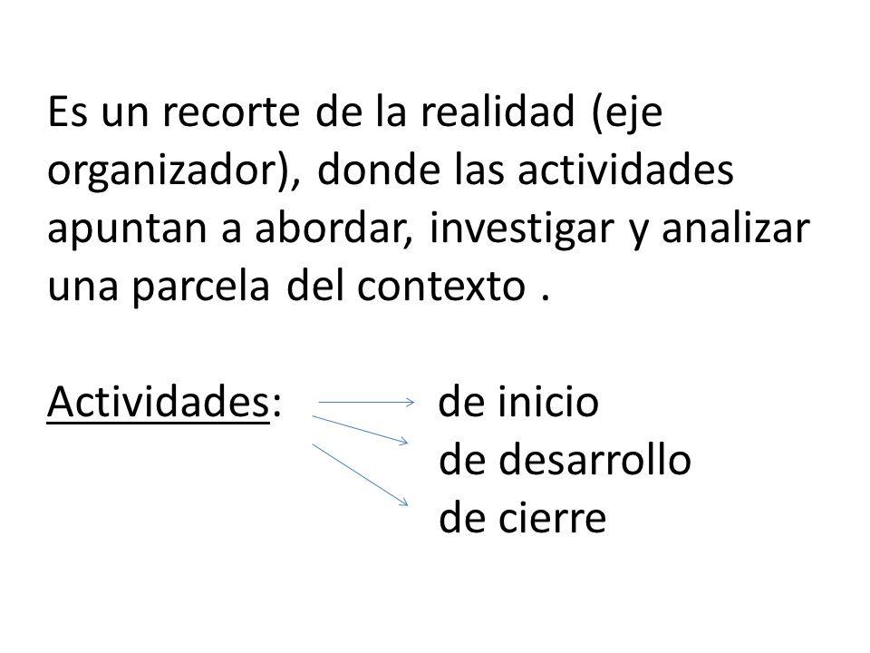 Es un recorte de la realidad (eje organizador), donde las actividades apuntan a abordar, investigar y analizar una parcela del contexto. Actividades: