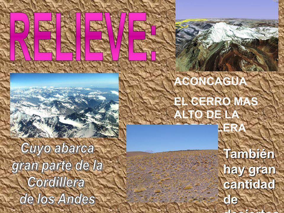 ACONCAGUA EL CERRO MAS ALTO DE LA CORDILLERA También hay gran cantidad de desiertos