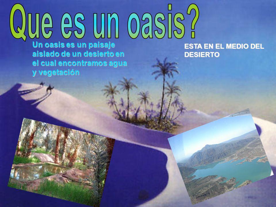 Un oasis es un paisaje aislado de un desierto en el cual encontramos agua y vegetación ESTA EN EL MEDIO DEL DESIERTO