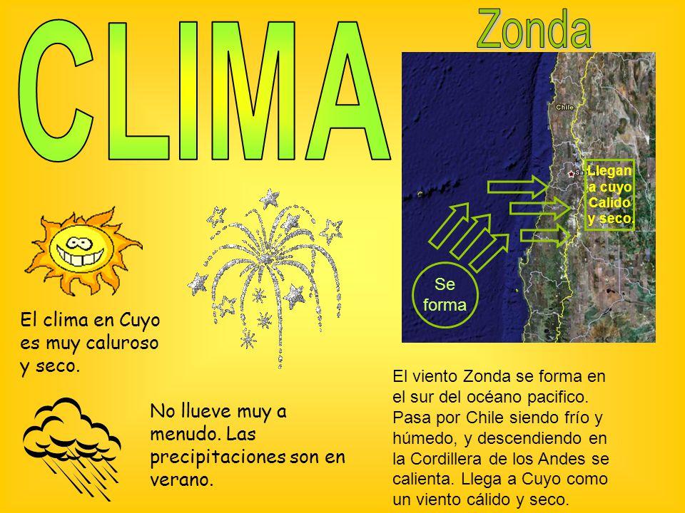El clima en Cuyo es muy caluroso y seco.No llueve muy a menudo.