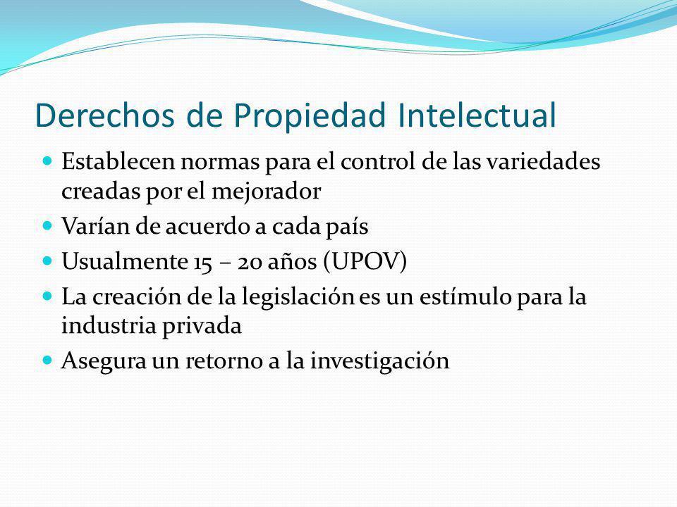 Derechos de Propiedad Intelectual Establecen normas para el control de las variedades creadas por el mejorador Varían de acuerdo a cada país Usualmente 15 – 20 años (UPOV) La creación de la legislación es un estímulo para la industria privada Asegura un retorno a la investigación