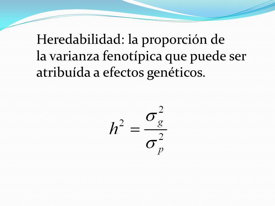 REGRESION DE LA MEDIA DE LA PROGENIE SOBRE LA MEDIA DE DOS PADRES b = ½ σ 2 (ADITIVA) ½ σ 2 (FENOTIPICA) = h 2