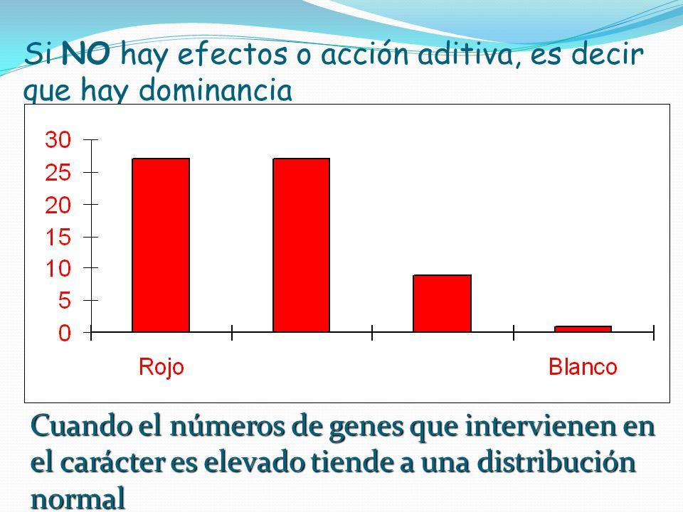 Si NO hay efectos o acción aditiva, es decir que hay dominancia Cuando el números de genes que intervienen en el carácter es elevado tiende a una dist