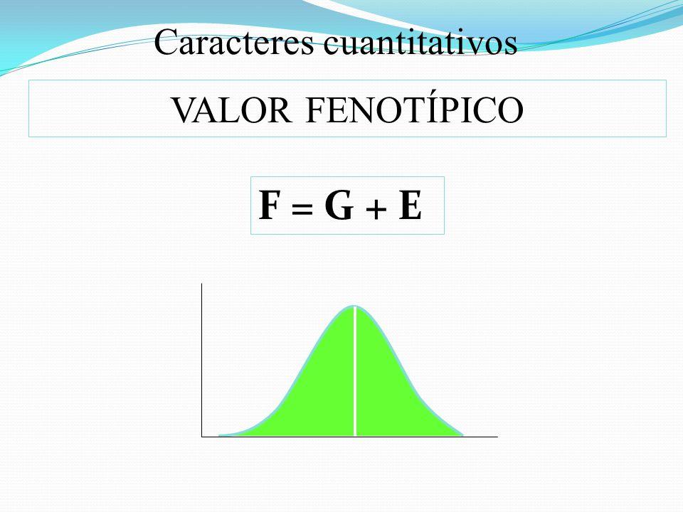 Caracteres cuantitativos VALOR FENOTÍPICO F = G + E