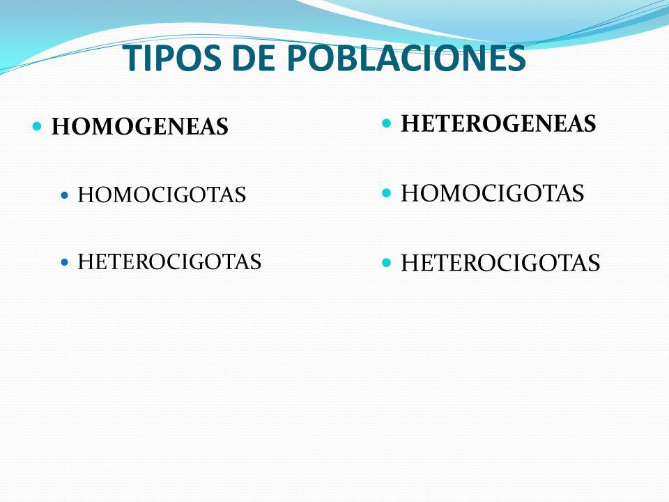 TIPOS DE POBLACIONES HOMOGENEAS HOMOCIGOTAS HETEROCIGOTAS HETEROGENEAS HOMOCIGOTAS HETEROCIGOTAS