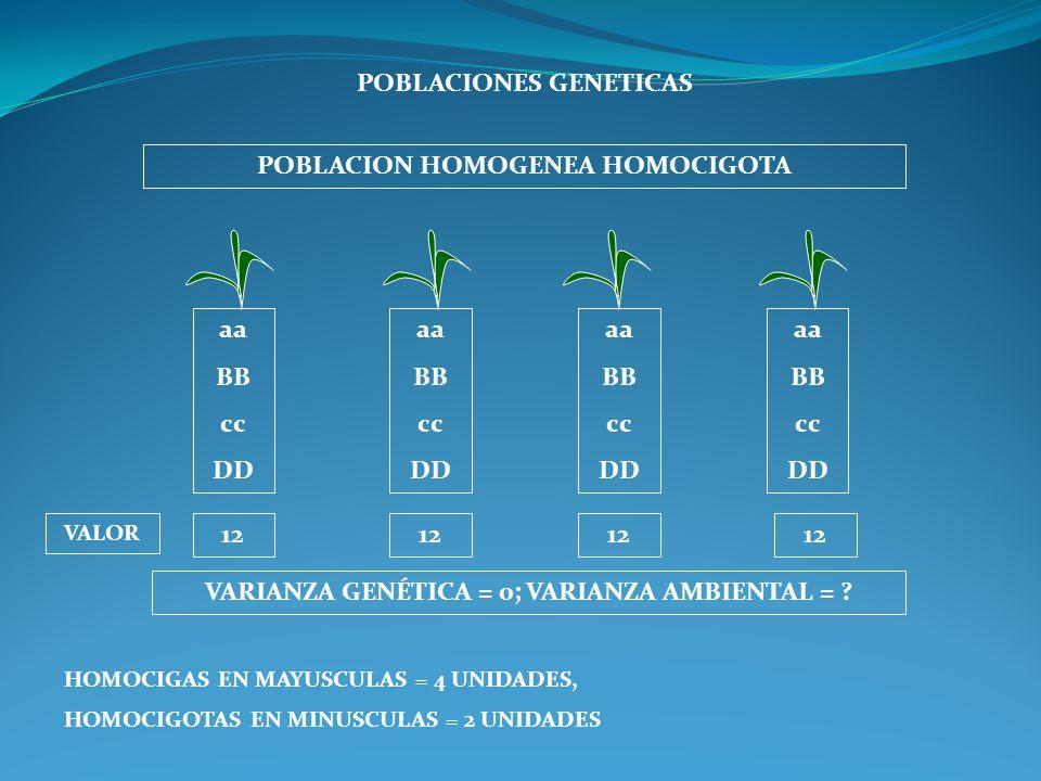 POBLACIONES GENETICAS POBLACION HOMOGENEA HOMOCIGOTA aa BB cc DD aa BB cc DD aa BB cc DD aa BB cc DD VARIANZA GENÉTICA = 0; VARIANZA AMBIENTAL = ? VAL