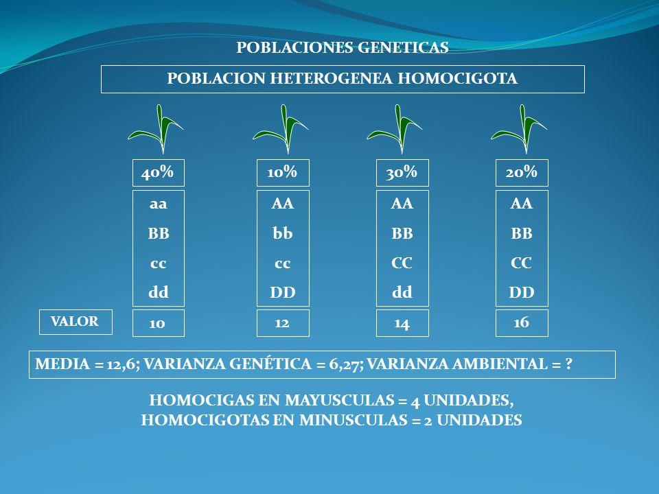 POBLACIONES GENETICAS POBLACION HETEROGENEA HOMOCIGOTA aa BB cc dd AA bb cc DD AA BB CC dd AA BB CC DD MEDIA = 12,6; VARIANZA GENÉTICA = 6,27; VARIANZ