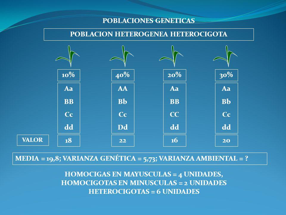 POBLACIONES GENETICAS POBLACION HETEROGENEA HETEROCIGOTA Aa BB Cc dd AA Bb Cc Dd Aa BB CC dd Aa Bb Cc dd MEDIA = 19,8; VARIANZA GENÉTICA = 5,73; VARIA