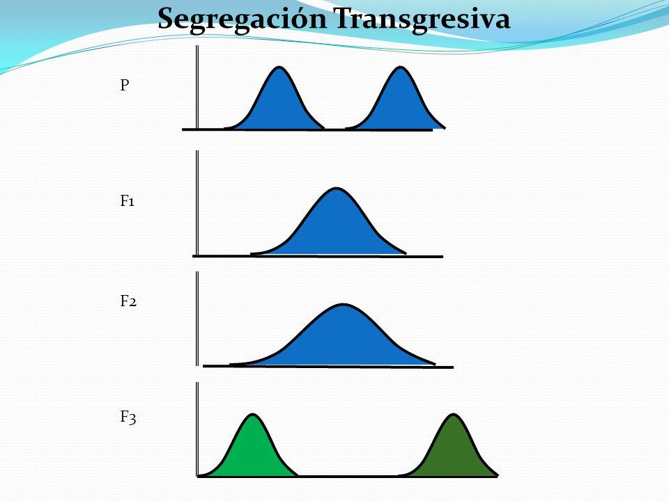 Segregación Transgresiva P F1 F2 F3
