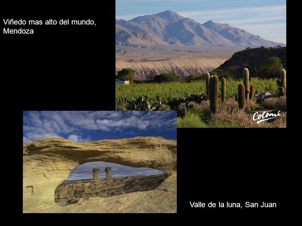 Valle de la luna, San Juan Viñedo mas alto del mundo, Mendoza