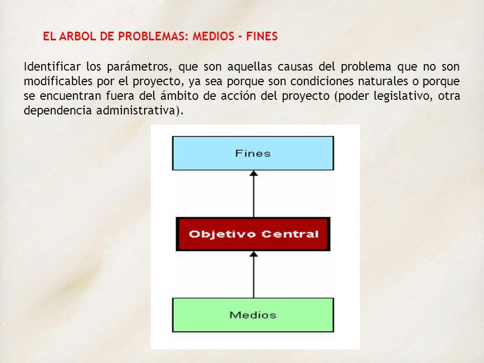 EL ARBOL DE PROBLEMAS: MEDIOS - FINES Identificar los parámetros, que son aquellas causas del problema que no son modificables por el proyecto, ya sea