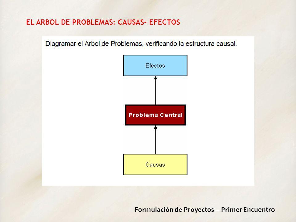 Formulación de Proyectos – Primer Encuentro EL ARBOL DE PROBLEMAS: CAUSAS- EFECTOS