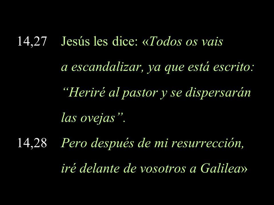 14,27 Jesús les dice: «Todos os vais a escandalizar, ya que está escrito: Heriré al pastor y se dispersarán las ovejas. 14,28 Pero después de mi resur
