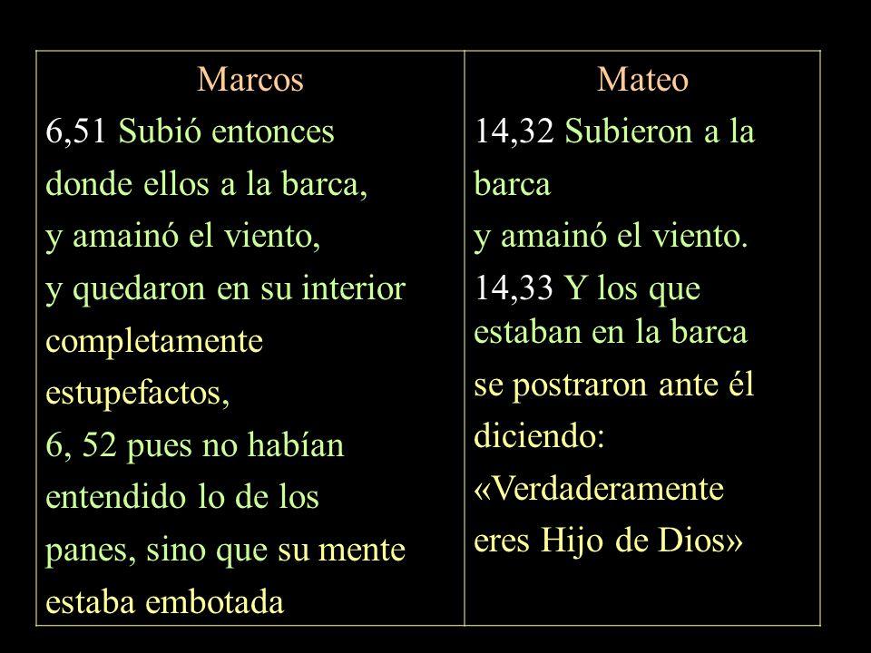 Marcos 6,51 Subió entonces donde ellos a la barca, y amainó el viento, y quedaron en su interior completamente estupefactos, 6, 52 pues no habían ente