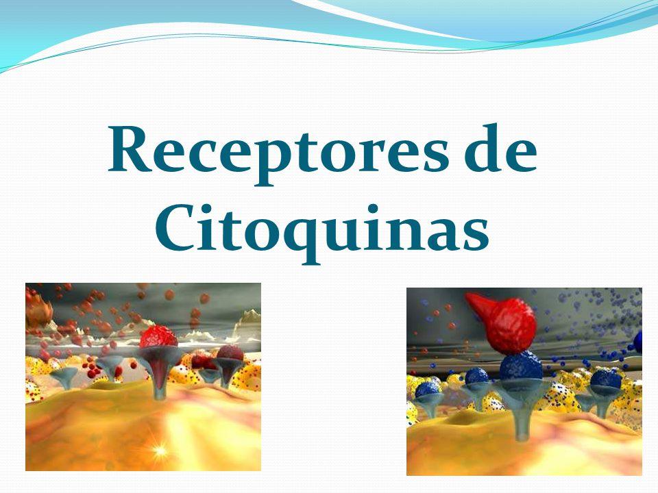 Receptores de Citoquinas