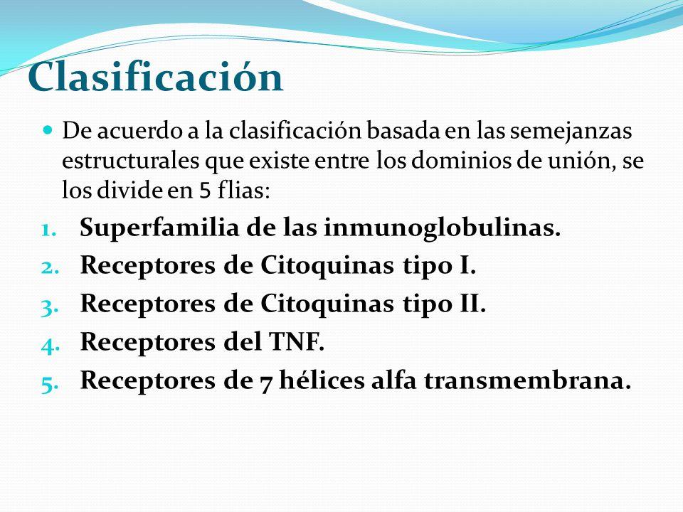 Clasificación De acuerdo a la clasificación basada en las semejanzas estructurales que existe entre los dominios de unión, se los divide en 5 flias: 1