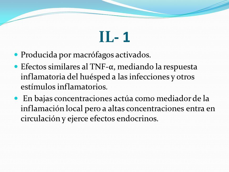 IL- 1 Producida por macrófagos activados. Efectos similares al TNF-α, mediando la respuesta inflamatoria del huésped a las infecciones y otros estímul