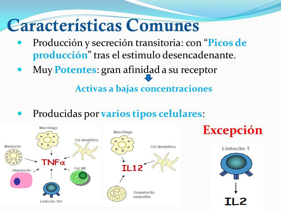 Características Comunes Producción y secreción transitoria: con Picos de producción tras el estimulo desencadenante. Muy Potentes: gran afinidad a su