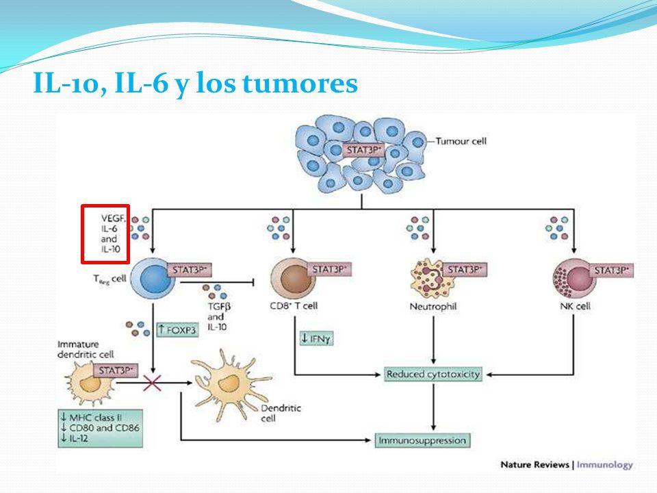 IL-10, IL-6 y los tumores