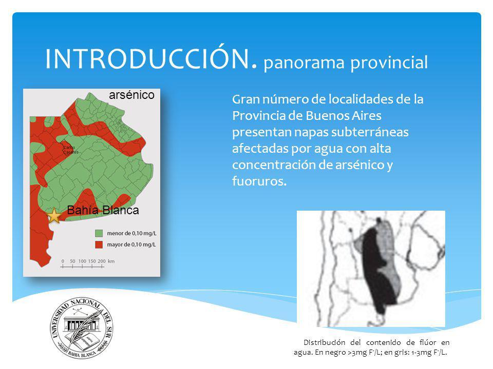 INTRODUCCIÓN. panorama provincial Gran número de localidades de la Provincia de Buenos Aires presentan napas subterráneas afectadas por agua con alta